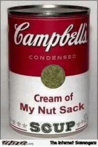 Internet, Memes, and 🤖: CONDENSED  Cream of  My Nut Sack  SSUE  .com The Internet Scavengers