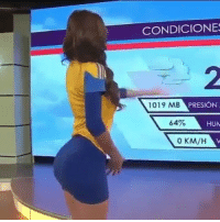 Fam, Lit, and Memes: CONDICIONES  1019 MB  PRESION  64%  HUM  0 KM/H  V This weather report is Lit fam 😂👌😍😍🔥🔥🔥 she is @iamyanetgarcia