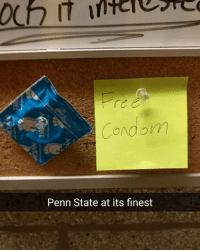 Someone's actually going to use that condom too 😔😔😥 (via: reddit-TheOnlyChicken): Condom  Penn State at its flnest Someone's actually going to use that condom too 😔😔😥 (via: reddit-TheOnlyChicken)