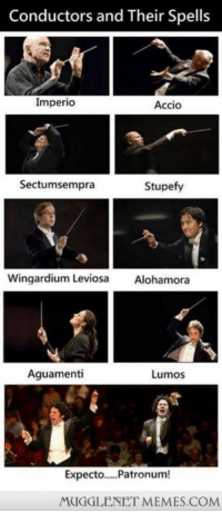 """Memes, Http, and Never: Conductors and Their Spells  Imperio  Accio  Sectumsempra  Stupefy  Wingardium Leviosa Alohamora  Aguamenti  Lumos  Expecto..Patronum!  MUGGLENET MEMES.COM <p>Never thought of it this way!  <a href=""""http://ift.tt/NyzQ5F"""">http://ift.tt/NyzQ5F</a></p>"""