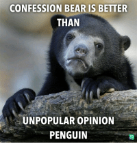 Confession Bear: CONFESSION BEAR IS BETTER  THAN  UNPOPULAR OPINION  PENGUIN