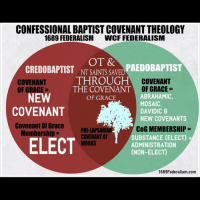 """Memes, Israel, and White: CONFESSIONAL BAPTIST COVENANT THEOLOGY  1689 FEDERALISM  WCF FEDERALISM  OT &  CREDOBAPTIST NTSAINTS SAVED  THROUGH  THE COVENANT""""  OF GRACE  COVENANT  OF GRACE  ABRAHAMIC,  MOSAIC,  DAVIDIC 8  NEW COVENANTS  COVENANT  OF GRACE  NEW  COVENANT  Covenant Of Grace  PRE-LAPSARIAR  COVENANT OF  WORKS  COG MEMBERSHIP =  SUBSTANCE (ELECT)  ADMINISTRATION  (NON-ELECT)  Membership =  ELECT  1689Federalism.com The Westminster view of Covenant Theology is not the only form of Covenant Theology. Baptist Covenant Theology (also known as 1689 Federalism) notes a distinction between the Mosaic Covenant and the Covenant of Grace, stating that the former was a covenant of works for Israel's status in the land. (This was not a salvific covenant; those who were saved prior to Christ were saved by grace through faith, but by virtue of the New Covenant, not by virtue of the Mosaic Covenant). John Owen rightly argues that Hebrews 8 necessitates two separate covenants and doesn't allow for a twofold administration of a single covenant. For further reading on this issue, I suggest """"The Distinctiveness of Baptist Covenant Theology"""" by Pascal Denault and """"Covenant Theology: From Adam to Christ"""" by Nehemiah Coxe and John Owen (which includes Owen's exposition of Hebrews 8). (Note: The person who made these charts, Brandon Adams, has since come to the conclusion that John Gill wasn't actually of the 20th Century BCT view. However, this position is still held by other solid Baptist men, like Sam Waldron, James White, Earl Blackburn, and Walt Chantry). Reformed CovenantTheology Baptist ReformedBaptist ParticularBaptist Republication BaptistCovenantTheology 1689Federalism 1689"""