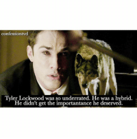 Memes, 🤖, and Get: confessiontvd  Tyler Lockwood was so underrated. He was a hybrid.  He didn't get the importantance he deserved. Agree or Disagree? -@bestvdscenes