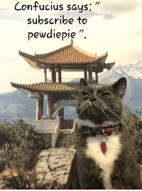 Just Do It, Confucius, and Do It: Confucius says:  subscribe to  pewdievie