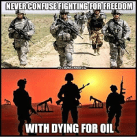 Freedom: CONFUSE FIGHTING FOR FREEDOM  MURICATODAY cou  WITH DYING FOR OIL