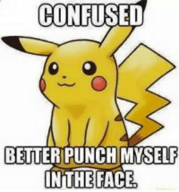 Pika plz: CONFUSED  BETTER PUNCH MYSELF  INTHE FACE Pika plz