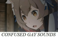 Confused, Gay, and One: CONFUSED GAY SOUNDS