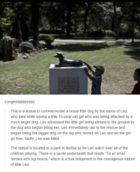 "Too wholesome now I'm sad via /r/wholesomememes http://bit.ly/2st4DaH: congenitaldisease  This is a statue to commemorate a brave little dog by the name of Leo,  who died while saving a little 10-year-old girl who was being attacked by a  much larger dog. Leo witnessed the little girl being pinned to the ground by  the dog who began biting her. Leo immediately ran to the rescue and  began biting the bigger dog on the leg who turned on Leo and let the girl  go free. Sadly, Leo was killed.  The statue is located in a park in Serbia so he can watch over all of the  children playing. There is a quote underneath that reads ""To all small  heroes with big hearts,"" which is a true testament to the courageous nature  of little Leo. Too wholesome now I'm sad via /r/wholesomememes http://bit.ly/2st4DaH"