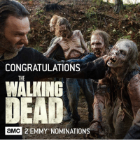 Congratulations to the #TWD cast and crew on their two #Emmy Nominations! http://bit.ly/29YxsCr: CONGRATULATIONS  THE  WALKING  DEAD  a MMC 2 EMMY NOMINATIONS Congratulations to the #TWD cast and crew on their two #Emmy Nominations! http://bit.ly/29YxsCr