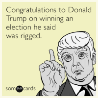 Donald Trump On: Congratulations to Donald  Trump on winning an  election he said  Was rigged.  ee  cards