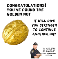 Congratulations: CONGRATULATIONS!  YOU'VE FOUND THE  GOLDEN NUT  IT WILL GIVE  YOu STRENGTH  TO CONTINUE  ANOTHER DAY  YOU ARE STILL  ON STRICT NO  NuT PROTOCOL.  KEEP SCROLLING  CITie En.