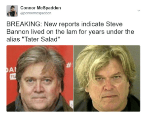 """You might be a white nationalist if: Connor McSpadden  @connormcspadden  BREAKING: New reports indicate Steve  Bannon lived on the lam for years under the  alias """"Tater Salad""""  FL You might be a white nationalist if"""