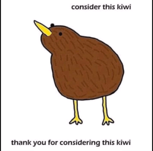 Thank You, The Following, and Kiwi: consider this kiwi  thank you for considering this kiwi consider the following
