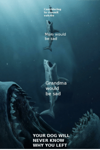 Grandma, Memes, and Http: Considering  to commit  suicide  Mom would  be sad  Grandma  would  be sad  YOUR DOG WILL  NEVER KNOW  WHY YOU LEFT Why I'm Sill Here via /r/memes http://bit.ly/2REODAh