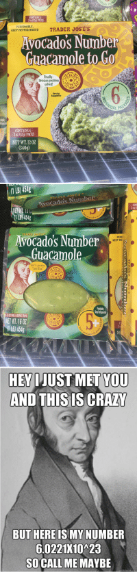 "While shopping at Trader Joes ran into this. Was laughing so hard: CONTAINS 6  2 oz (57g) PACKS  PERISHABLE,  KEEP REFRIGERATED  Avocado's Number  Guacamole to Go  Finally  solved!  Serving  Suggestion  UAL PAC  ishable  CONTAINS 6  2 oz (57g) PACKS  NET WT. 12 02  340g)   (1 LB) 454g  To  RADER JOSES  Avocado's Number  CON  0Z  1LB 454g  avocados  Avocado's Number  Guacamole  TRADER JOSE'S  PERI  KEEP RE  let's party  arriba!""  Paishable  erp Retigeated  2-8 OZ PEEL &SERVE TRAYS  NET WT. 16 0Z  1 B) 454g  b0  Ocados   HEV IJUST MET YOU  AND THIS IS CRAZ  BUT HERE IS MY NUMBER  6.0221K10A23  SO CALL ME MAYBE  quickmeme.com While shopping at Trader Joes ran into this. Was laughing so hard"