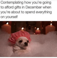 Funny, Memes, and How: Contemplating how you're going  to afford gifts in December when  you're about to spend everything  on yourself SarcasmOnly