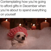 Memes, 🤖, and How: Contemplating how you're going  to afford gifts in December when  you're about to spend everything  on yourself Treat yoself, don't cheat yoself. @laughing.chicks