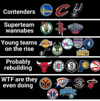 Agree or Disagree with this?! I would put the Wizards as a team on the rise, Wall and Beal are still very young, and they've got some young talent... idk where tf the kings are going though. They might need a whole section for themselves lol. They did have an awesome draft so I'll give them that: Contenders  wannabes  Young teams  on the rise  KERS  76  Probably  rebuilding  W Y  WTF are they  even doing  RON  ZARD Agree or Disagree with this?! I would put the Wizards as a team on the rise, Wall and Beal are still very young, and they've got some young talent... idk where tf the kings are going though. They might need a whole section for themselves lol. They did have an awesome draft so I'll give them that
