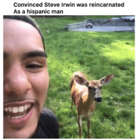 Dude, Funny, and Steve Irwin: Convinced Steve Irwin was reincarnated  As a hispanic man This dude 🤣 👉🏽(via:@coldgamekelv)