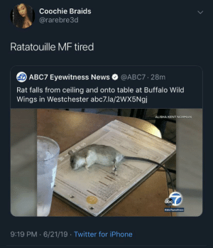 RIP Ratatouille: Coochie Braids  @rarebre3d  Ratatouille MF tired  ABC7 Eyewitness News  @ABC7 28m  Rat falls from ceiling and onto table at Buffalo Wild  Wings in Westchester abc7.la/2wX5Ngj  ALISHA KENT NORMAN  abc  #abc7eyewitness  9:19 PM 6/21/19 Twitter for iPhone  . RIP Ratatouille