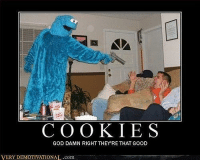 -Brantu: COOKIES  GOD DAMN RIGHT THEY'RE THAT GOOD  VERY DEMOTIVATIONAL.com -Brantu