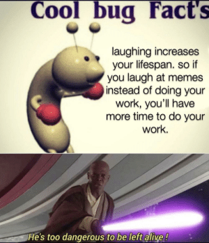 the sacred texts: Cool bug Fact's  laughing increases  your lifespan. so if  you laugh at memes  instead of doing your  work, you'll have  more time to do your  work.  He's too dangerous to be left alive ! the sacred texts