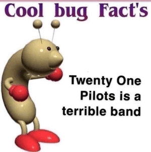 neat: Cool bug Fact's  Twenty One  Pilots is a  terrible band neat