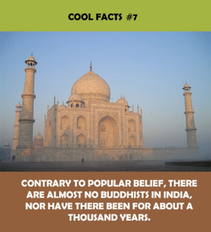 Facts, Cool, and India: COOL FACTS #7  CONTRARY TO POPULAR BELIEF, THERE  ARE ALMOST NO BUDDHISTS IN INDIA,  NOR HAVE THERE BEEN FOR ABOUT A  THOUSAND YEARS.
