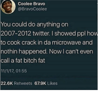 Bitch, Girls, and Twitter: Coolee Bravo  @BravoCoolee  You could do anything on  2007-2012 twitter. I showed ppl how  to cook crack in da microwave and  nothin happened. Now I can't even  call a fat bitch fat  11/1/17, 01:55  22.6K Retweets 67.9K Likes I'm conducting a science experiment, I need girls to send me tit pics for a science project and I need 3 trials and at least 30 women's. Thanks