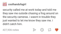 security cameras: coolhandofagirl  security called me at work today and told me  they saw me outside chasing a frog around on  the security cameras. i wasnt in trouble they  just wanted to let me know they saw me. i  didn't catch him.  427,936 notes