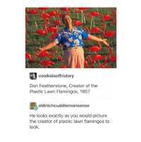 Tumblr, Aws, and Plastic: coolkidsofhistory  Don Featherstone, Creator of the  Plastic Lawn Flamingos, 1957  eldritchcuddlernonsense  He looks exactly as you would picture  the creator of plastic lawn flamingos to  look. aw