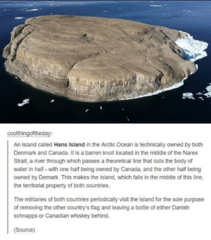 If you thought your country was petty: coolthingoftheday:  An island called Hans Island in the Arctic Ocean is technically owned by both  Denmark and Canada. It is a barren knoll located in the middle of the Nares  Strait, a river through which passes a theoretical line that cuts the body of  water in half- with one half being owned by Canada, and the other half being  owned by Demark. This makes the island, which falls in the middle of this line,  the territorial property of both countries.  The militaries of both countries periodically visit the island for the sole purpose  of removing the other country's flag and leaving a bottle of either Danish  schnapps or Canadian whiskey behind.  Source) If you thought your country was petty