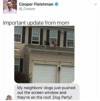 Bitch, Dogs, and Memes: Cooper Fleishman  Cooper  Important update from mom  My neighbors' dogs just pushed  out the screen window and  they're on the roof. Dog Party! Bitch ima dog woof