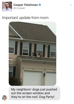 Dogs, Party, and Tumblr: Cooper Fleishman e  @_Cooper  Important update from mom   My neighbors' dogs just pushed  out the screen window and  they're on the roof. Dog Party! twitterlols:I want an invite