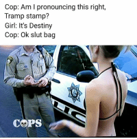 Destiny, Memes, and Girl: Cop: Am l pronouncing this right,  Tramp stamp?  Girl: It's Destiny  Cop: Ok slut bag  COPS 👀Damnnnn 💀💀💀themed▶ Swipe. memes pt2