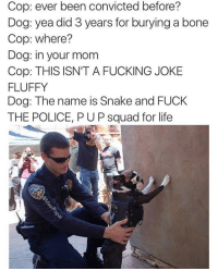 Credit: @masipopal 😂: Cop: ever been convicted before?  Dog: yea did 3 years for burying a bone  Cop: where?  Dog: in your mom  Cop: THIS ISN'T A FUCKING JOKE  FLUFFY  Dog: The name is Snake and FUCK  THE POLICE, PUP squad for life Credit: @masipopal 😂