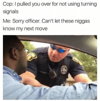 Funny, Sorry, and Never: Cop: I pulled you over for not using turning  signals  Me: Sorry officer. Can't let these niggas  know my next move Never 💯💯💯