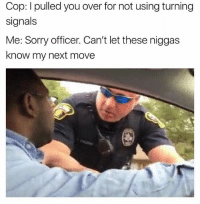 Memes, Sorry, and Never: Cop: I pulled you over for not using turning  signals  Me: Sorry officer. Can't let these niggas  know my next move Never!! 😂