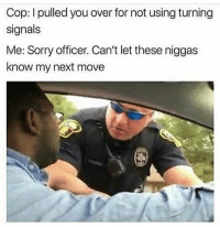 Memes, Sorry, and Digg: Cop: I pulled you over for not using turning  signals  Me: Sorry officer. Can't let these niggas  know my next move U DIGG 🤷🏾♂️