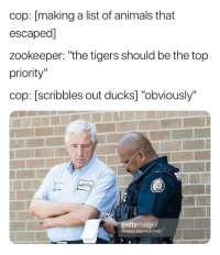"Animals, Ironic, and Ducks: cop: [making a list of animals that  escaped]  zookeeper: ""the tigers should be the top  priority""  cop: [scribbles out ducks] ""obviously""  gettyimages  Roberto Machado Noa The ducking tigers fer sher"