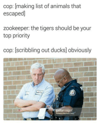 Funny, Cops, and List Ofs: cop: making list of animals that  escaped]  zookeeper: the tigers should be your  top priority  cop: scribbling out ducks obviously  gettyimages  Roberto Machado Noa - Smitty Werbenjagermanjensen