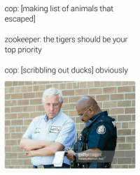 Animals, Ducks, and Tigers: cop: making list of animals that  escaped]  zookeeper: the tigers should be your  top priority  cop: scribbling out ducks obviously  gettyimages  Roberto Machado Noa