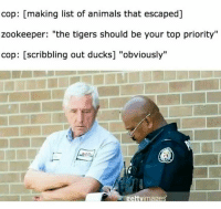 """Animals, Ducks, and Tigers: cop: [making list of animals that escaped]  zookeeper: """"the tigers should be your top priority""""  cop: [scribbling out ducks] """"obviously""""  ettvimages Depends whether or not these ducks were equipped with lasers 