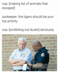 Animals, Ducks, and Tigers: cop: [making list of animals that  escaped]  zookeeper: the tigers should be your  top priority  cop: [scribbling out ducks] obviously 18+ QWERTY Viral Photos That Will Make Type YUIOP