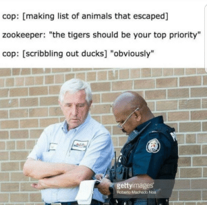 """Meirl by JackTheBorco MORE MEMES: cop: [making list of animals that escaped]  zookeeper: """"the tigers should be your top priority""""  cop: [scribbling out ducks] """"obviously""""  gettyimages  Roberto Machado Noa Meirl by JackTheBorco MORE MEMES"""
