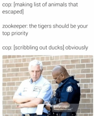 Animals, Dank, and Funny: cop: [making list of animals that  escaped]  zookeeper: the tigers should be your  top priority  cop: [scribbling out ducks] obviously  ettyimages Old but still ducking funny by EugenePBH MORE MEMES