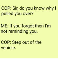 Dank, 🤖, and Step: COP: Sir, do you know why I  pulled you over?  ME: If you forgot then I'm  not reminding you.  COP: Step out of the  vehicle.