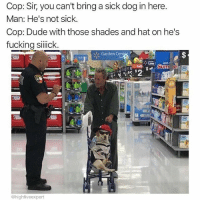 Thats one sick dog (@highfiveexpert): Cop: Sir, you can't bring a sick dog in here  Man: He's not sick.  Cop: Dude with those shades and hat on he's  fucking silick  Garden Cente, r  UST  @highfiveexpert Thats one sick dog (@highfiveexpert)