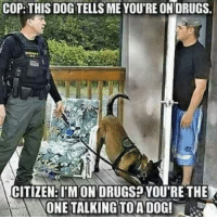 Drugs, Dog, and Citizen: COP:THIS DOG TELLS ME YOU'RE ON DRUGS  CITIZEN:I'M ON DRUGSP YOU'RE THE  ONETALKING TOADOG!