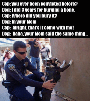 Found the bad boy. via /r/funny https://ift.tt/2OJ3x7u: Cop: you ever been convicted before?  Dog: Idid 3 years for burying a bone.  Cop: Where did you bury it?  Dog: In your Mom  Cop: Aright, that's itcome with me!  Dog: Haha, your Mom said the same thing.. Found the bad boy. via /r/funny https://ift.tt/2OJ3x7u